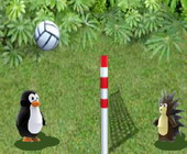 Zoo Volley
